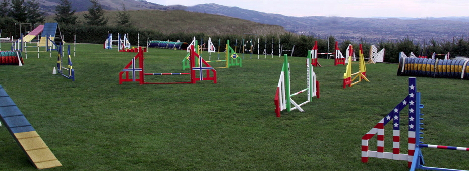 Power Paws Agility Yard